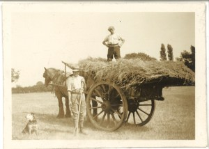John Hope, a Styal farmer, works the fields with his assistant and his dog at Cross Farm, Styal, in the 1930s