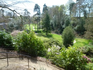 The lower garden and the Mill Meadow will be the setting of our Victorian May Day